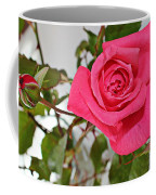 Deep Pink Rose - Summer - Rosebuds Coffee Mug