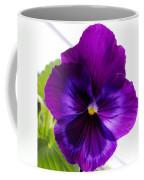 Deep Purple Pansy Coffee Mug