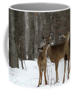 Deer Affection Coffee Mug