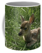 Deer Fawn Coffee Mug