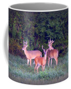 Deer-img-0150-001 Coffee Mug