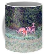 Deer-img-0156-002 Coffee Mug