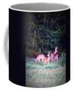 Deer-img-0158-003 Coffee Mug