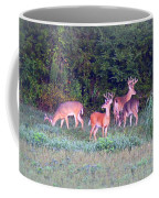 Deer-img-0160-005 Coffee Mug