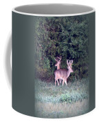 Deer-img-0177-001 Coffee Mug