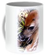 Deer-img-0349-002 Coffee Mug