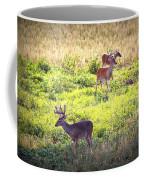Deer-img-0437-001 Coffee Mug