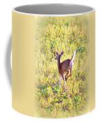 Deer-img-0456-001 Coffee Mug