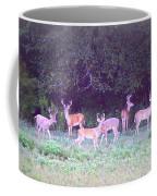 Deer-img-0470-002 Coffee Mug