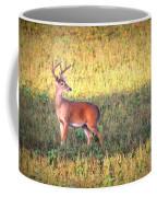 Deer-img-0627-002 Coffee Mug
