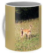 Deer-img-0642-001 Coffee Mug