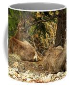 Deer In The Rockies Coffee Mug