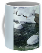 104618-v-deer On The Snow Bank Coffee Mug