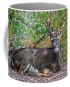 Deer Relaxing Coffee Mug