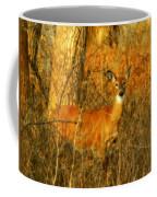 Deer Spotted In A Golden Glowing Field  Coffee Mug