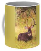Defassa Waterbuck Kobus Ellipsiprymnus Coffee Mug