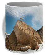 Defiant Coffee Mug