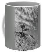 Defiant II Coffee Mug