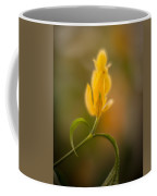 Delicate Fountain Of Gold Coffee Mug
