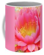 Delicate Pink Cactus Flower Coffee Mug