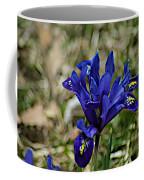 Delicate Sun Coffee Mug