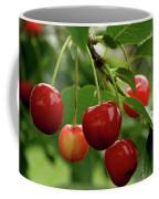 Delicious Cherries Coffee Mug by Sandy Keeton