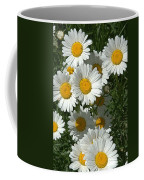 Delightful Daisies Coffee Mug