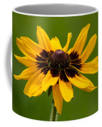 Denver Daisy Coffee Mug