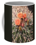 Desert Beauty Coffee Mug