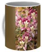 Desert Calico Wildflowers Coffee Mug
