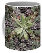 Desert Flora Coffee Mug
