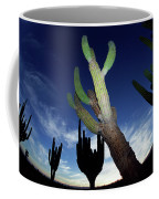 Desert Landscape Coffee Mug