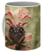 Desert Longing Coffee Mug