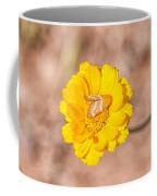 Desert-marigold Moth Coffee Mug