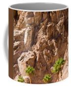 Desert Mountain Coffee Mug
