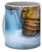 Desert Oasis Coffee Mug