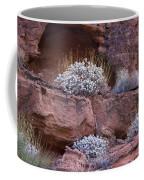 Desert Plant Life Coffee Mug