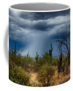 Desert Rains  Coffee Mug