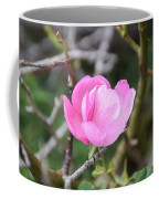 Desert Rose II Coffee Mug