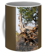Design By The Desert Coffee Mug