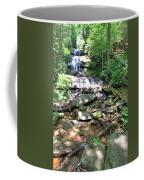 Desoto Falls Coffee Mug