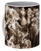Details In The Dew Sepia Coffee Mug