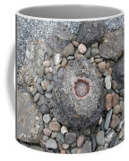 Devon Dartington Hall Stones Coffee Mug