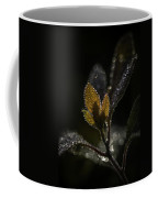 Dew Drops And Crystals Coffee Mug