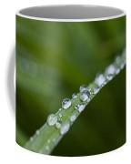 Dew Drops On Green Leaf Coffee Mug