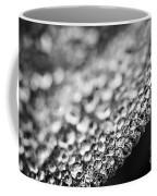 Dew Drops On Leaf Edge Coffee Mug