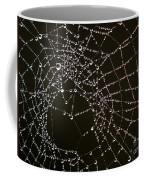 Dew Drops On Spider Web 4 Coffee Mug
