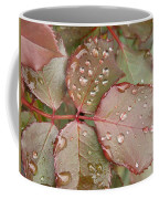 Dew Drops On The Rose Leaves Coffee Mug