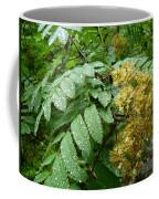 Dew Go On Coffee Mug