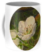 Dew Of Pear's Blooms Coffee Mug